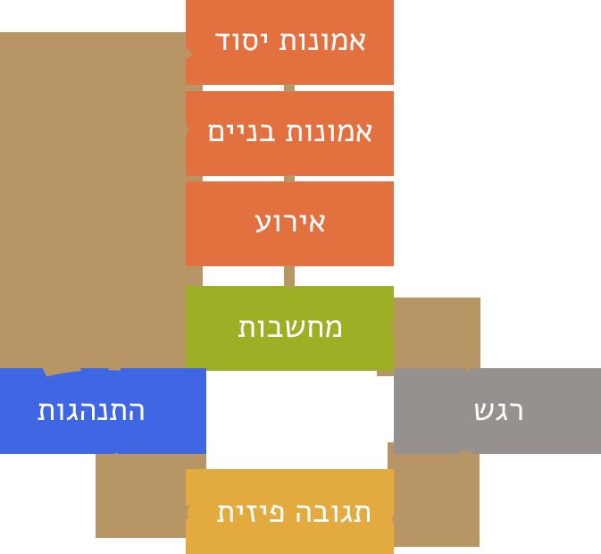 מעגל הסימפטום לפי LiCBT