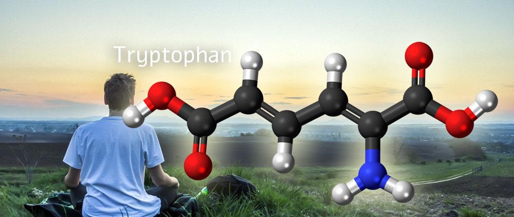 tryptophan חרדה דיכאון טיפול קוגניטיבי התנהגותי LICBT